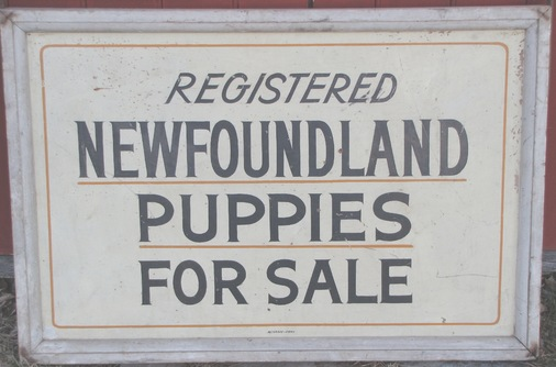 For Sale Sold Sign: Collectivator :: Puppies For Sale Sign SOLD